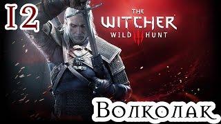 Прохождение The Witcher 3: Wild Hunt: Серия #12 - Волколак