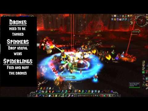 Cataclysm - Beth'tilac : Firelands Boss Strategy Guide