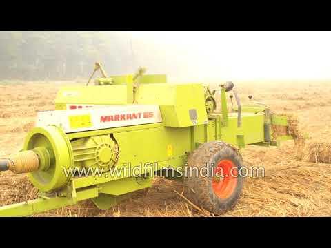 Mahindra 605 Dl- I Tractor Makes Hay With Claas Markant 55 Hay Baler