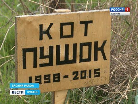 Кладбище Домашних Животных.RUS.mp4