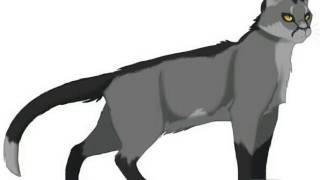 Гороскоп)Злых Котов Воителей (Пишите в комментариях кто Вы??)