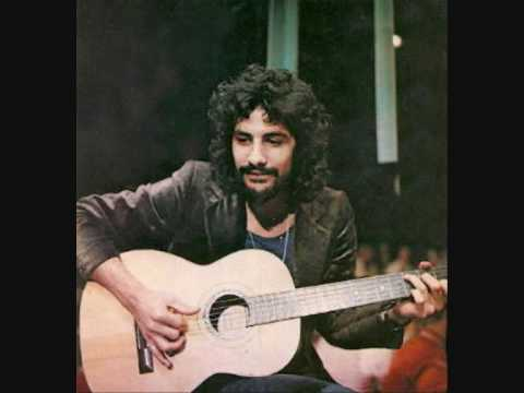 cat stevens father and son chords