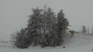 Hornisgrinde 22.01.2012-2 höchster Berg im Nordschwarzwald im Winter (1164m)
