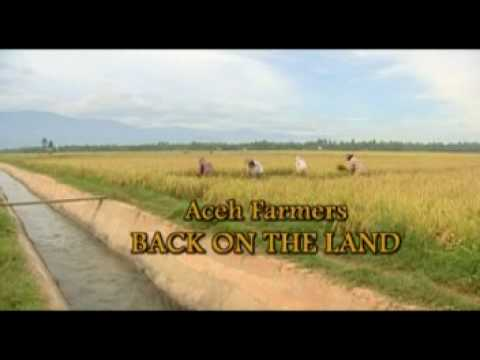 Aceh Farmers: Back on the Land - Trailer