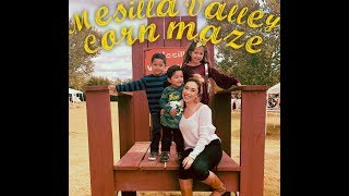 Mesilla Valley Corn Maze