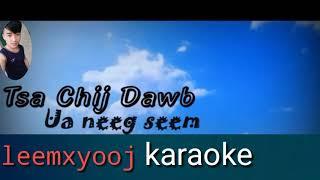 Tsa chij dawb ua neeg seem karaoke