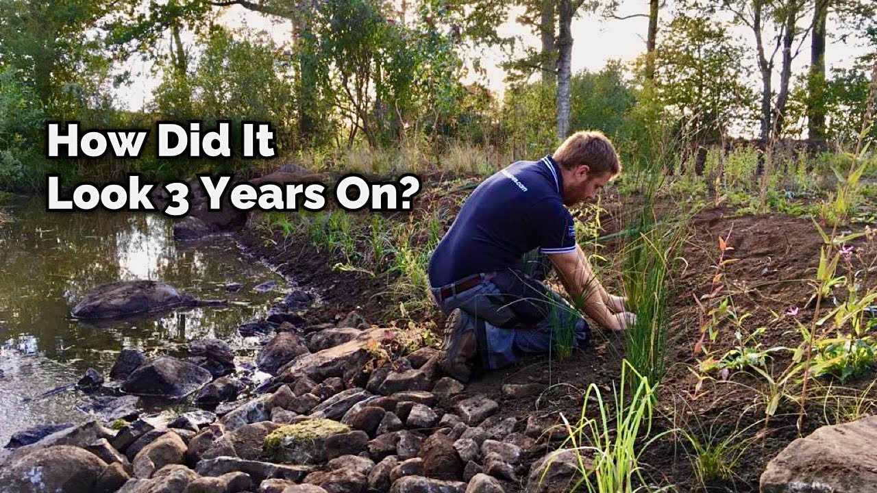 A Wildlife Pond & Wildflower Meadow in Scotland - 3 Years On - What a Difference!