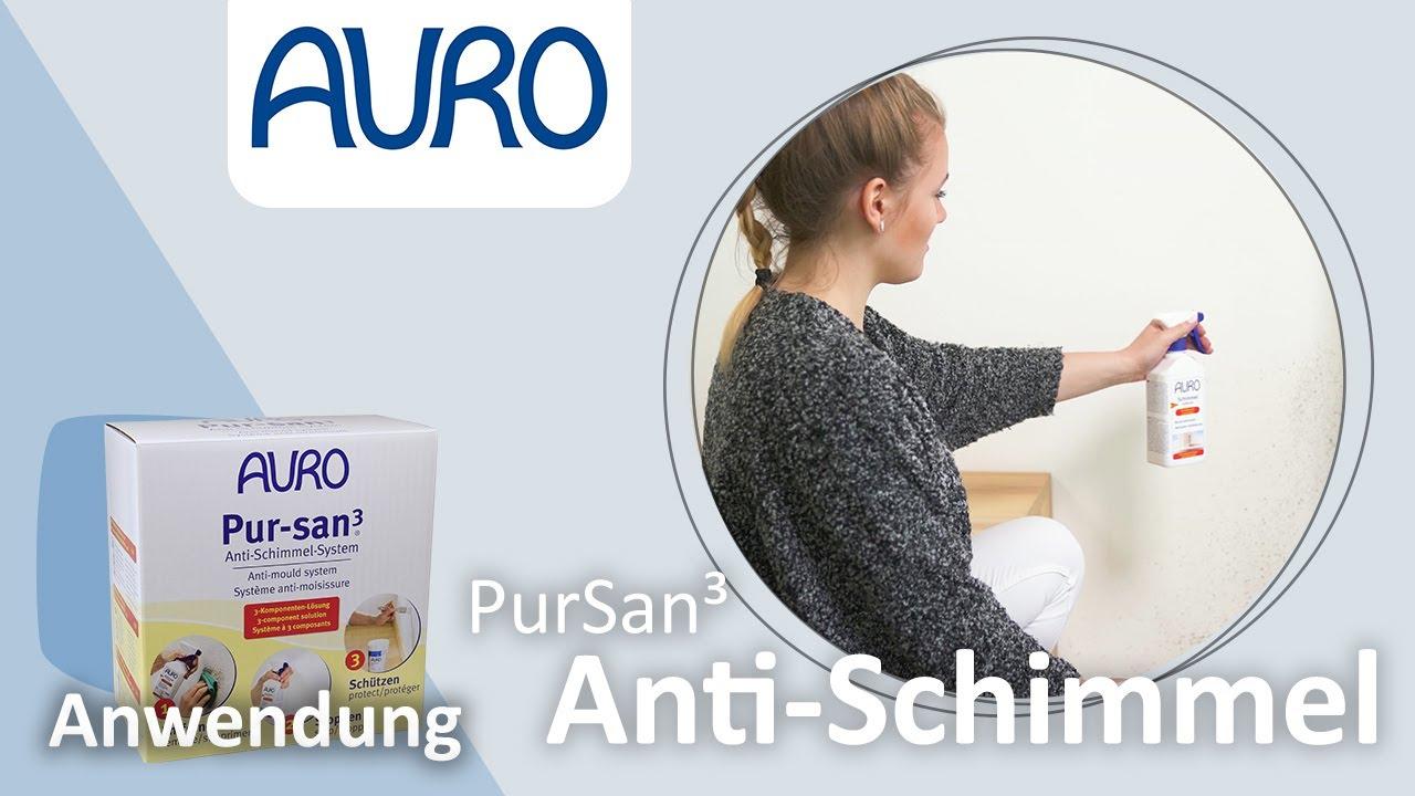 auro anwendung pur-san3 -das anti-schimmel-system- - youtube