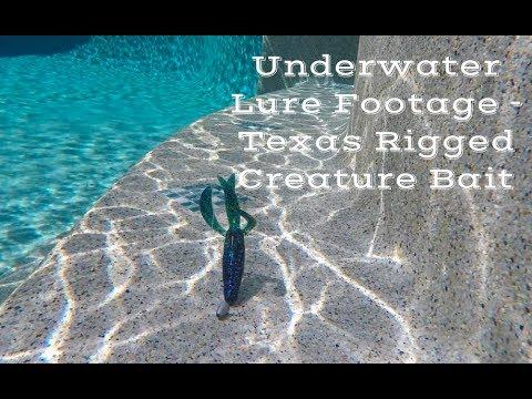 Underwater Lure Footage - Texas Rigged Creature Bait