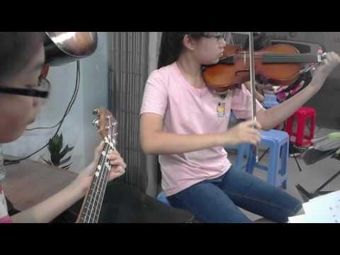 hoa tau organ ukulele