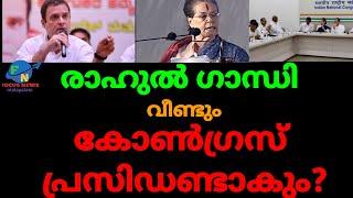 Rahul Gandhi may be Congress president again next year  malayalam news   national news