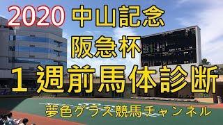 【馬体診断】2020中山記念&阪急杯!インディチャンプは音無厩舎らしい仕上がり?