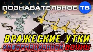 Вражеские утки информационной войны (Познавательное ТВ, Евгений Фёдоров)