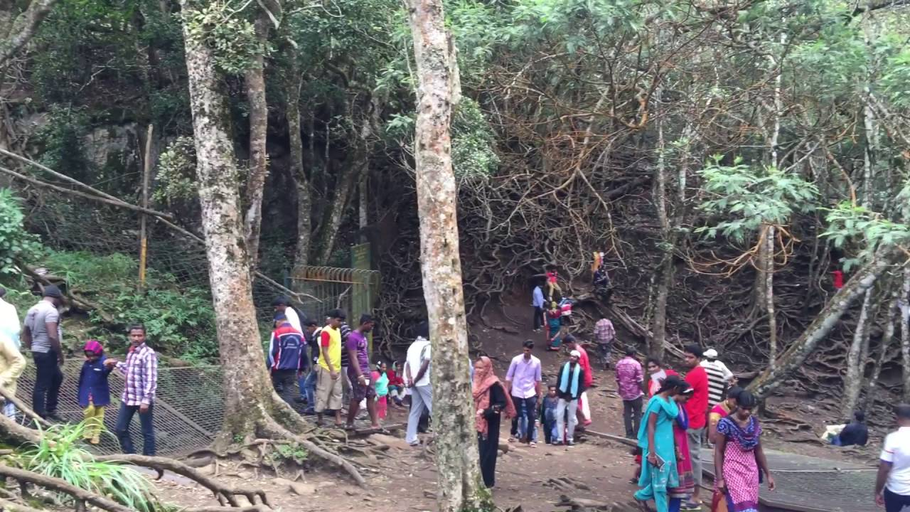 Image result for guna cave kodaikanal
