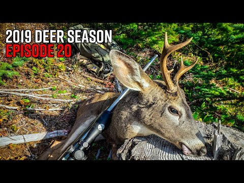 Tagged Out In Oregon! - General Rifle Blacktail Deer Hunt | 2019 Hunting Season EP.20