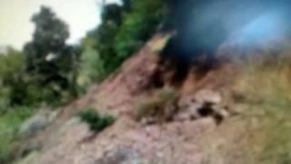 Landslide Santa Cruz - No SXE Cute Kitten Boobs