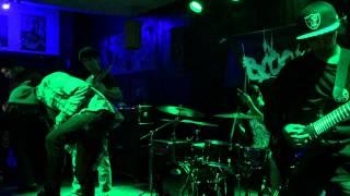 In Bloom-Full Dark No Stars LIVE @ Cobalt Cafe