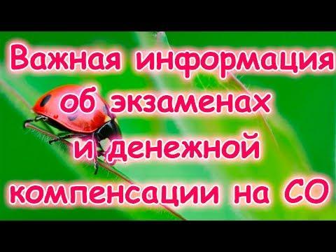 Семья Бровченко. Важная информация про аттестацию на СО и компенсацию. (09.15г.)