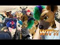 My 10 Craziest Furry Con Stories