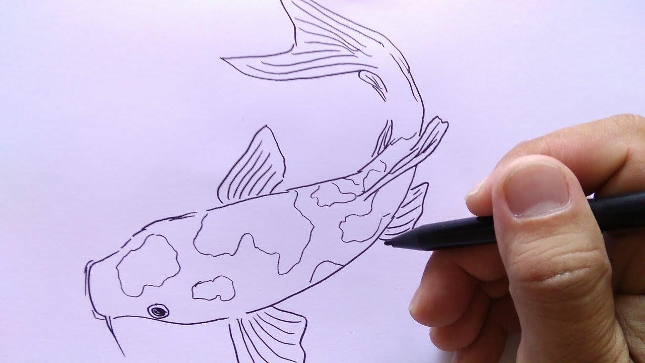 Cara Menggambar Ikan Koi