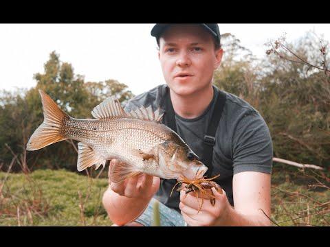 Best LURES - Murray Cod, Australian Bass, Golden & Silver Perch 4k