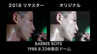 BARBEE BOYS IN TOKYO DOME 1988.8.22より 『C'm'on Let's Go!』のリマ...