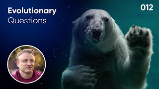 Will animals adapt to climate change? Evolution Question #12
