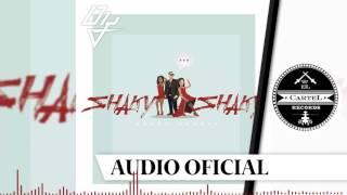 Shaky Shaky - Daddy Yankee Remix-Extended Dj Edwin