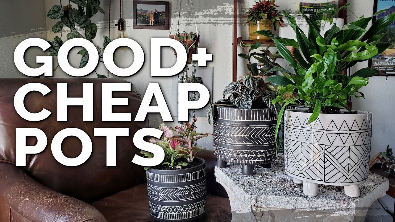 Cheap Plant Pots: HomeGoods vs. T.J.Maxx vs. DollarTree!