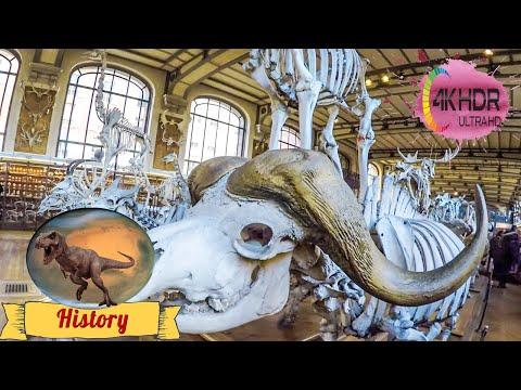 Museum national d'Histoire naturelle 4K, Paris 2016, GoPro Hero 4