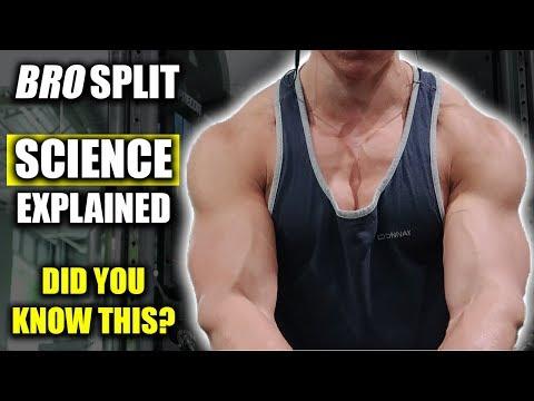 Altmetric – Single vs  Multiple Sets of Resistance Exercise