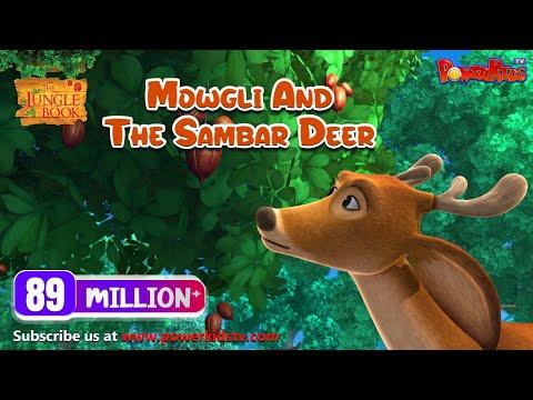 The Jungle Book Hindi Cartoon compilation | Mogli Cartoon Hindi |Mowgli and the Sambar Deer