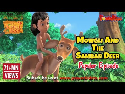 The Jungle Book Hindi Cartoon for kids compilation | Mogli Cartoon Hindi |Mowgli and the Sambar Deer thumbnail