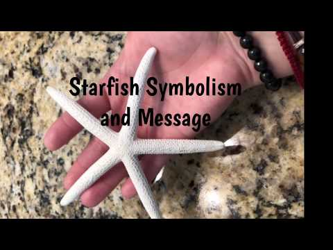 Starfish Message & Symbolism