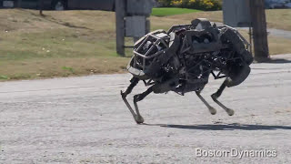 WildCat Robot Runs On All Fours | Video
