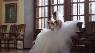 Денис и Елена (Свадьба 25 января 2014 год)