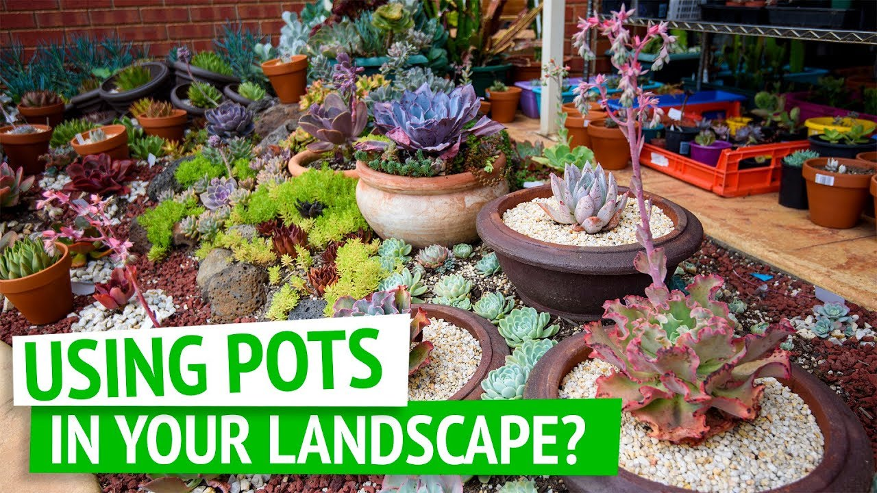 Pots In Your Landscape