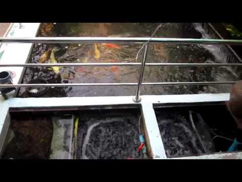 Yourkoishouse #7 ปลาคาร์ฟ, Moving bed media, ระบบกรองบ่อปลาคาร์ฟ