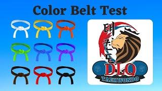 Taekwondo Color Belt Pr๐motion Test
