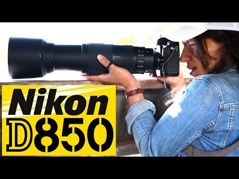 NIkon D850: Best Wildlife Camera EVER?