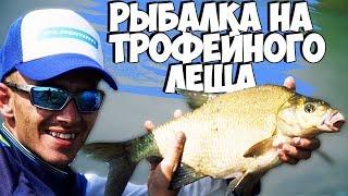 Рыбалка на ФИДЕР! Трофейные ЛЕЩИ рвут лески! Белорусская рыбалка на Соже!
