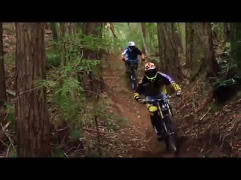 Fox Rampage Pro Carbon MTB Helmet