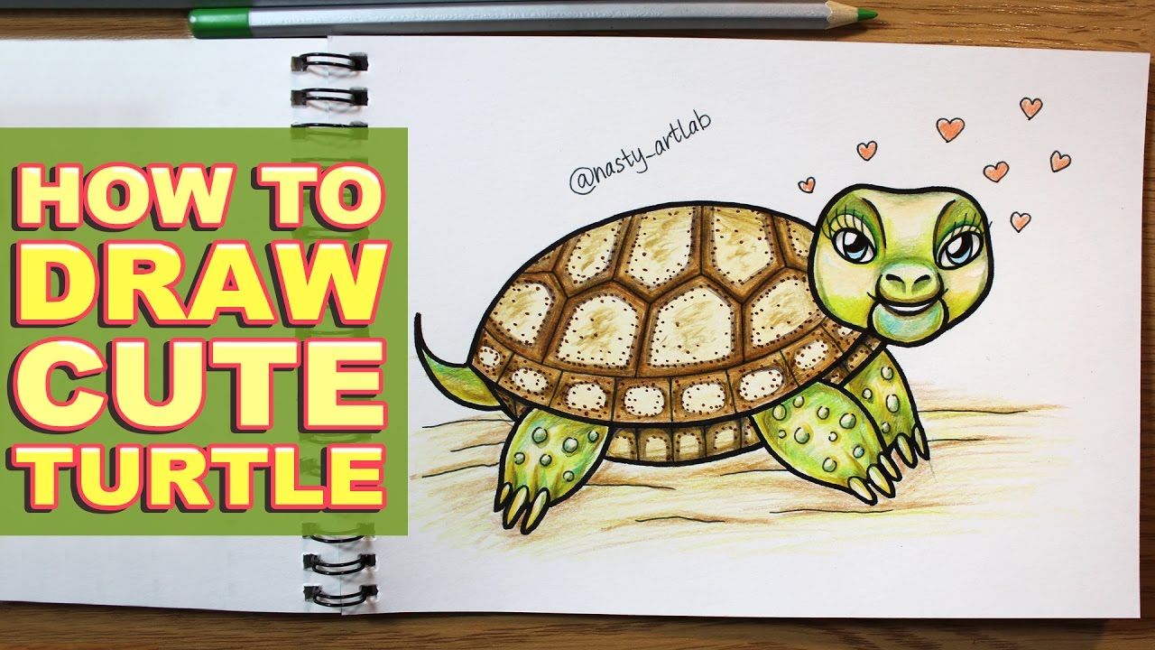 How to Draw Cute Cartoon Turtle in Timelapse with Color Pencils