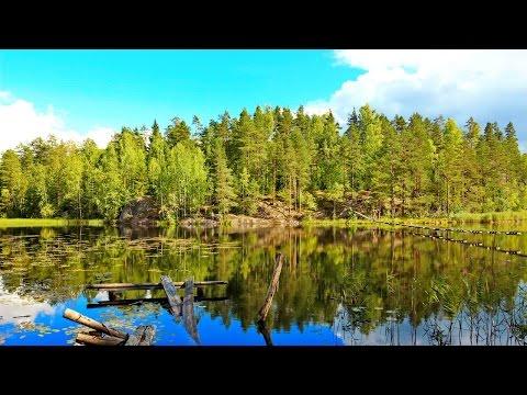 Скалы и озера. Чудесная природа Карельского перешейка. Карелия. Поход. @stanboyko