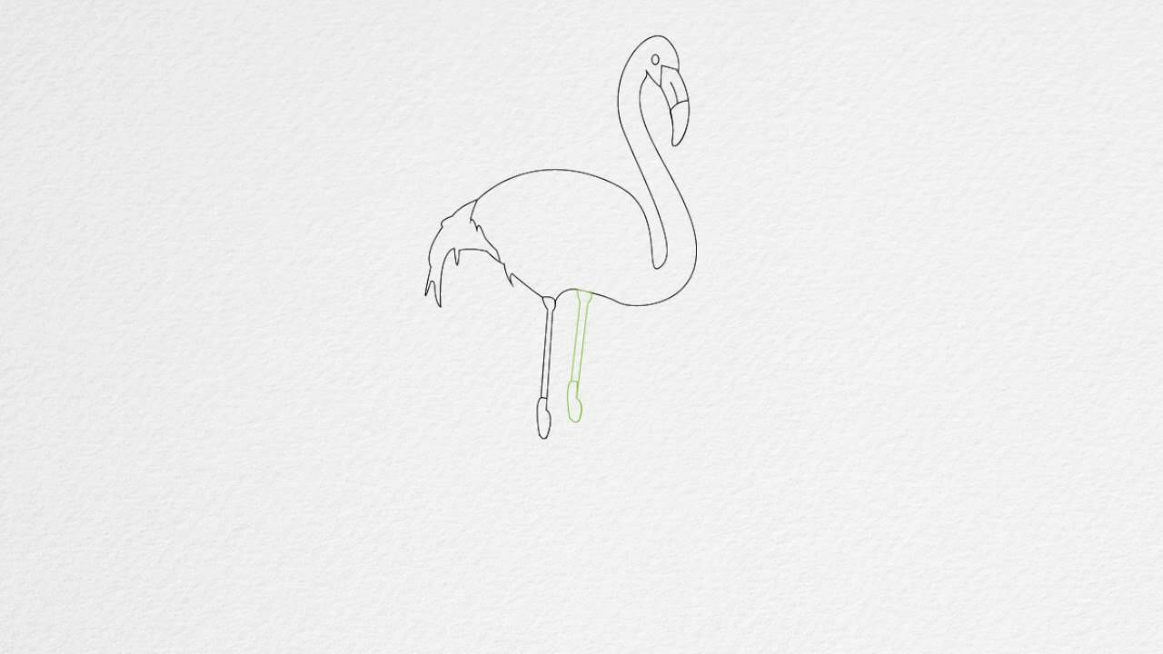 How to draw a flamingo step by step youtube how to draw a flamingo step by step pronofoot35fo Images