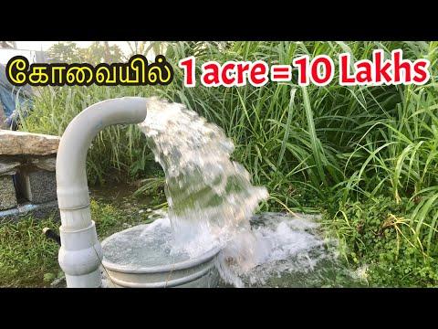 20 ஏக்கர் தென்னந்தோப்பு விற்பனைக்கு உள்ளது /1Acre 10Lakhs / Agricultural Land for Sale in Coimbatore
