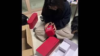 [삼닥스TV] 다이슨 Red에디션 언박싱!!+ 삼닥스