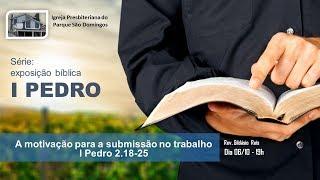 I. P. Pq. São Domingos - 06/10/2019 - A motivação para a submissão no trabalho