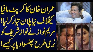 Maryam Nawaz blunders caused great damage to Nawaz Sharif and PML N : Sabir Shakir