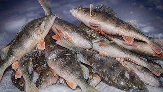 видео Зимняя ловля бёрша » Сайт о рыбалке для начинающих
